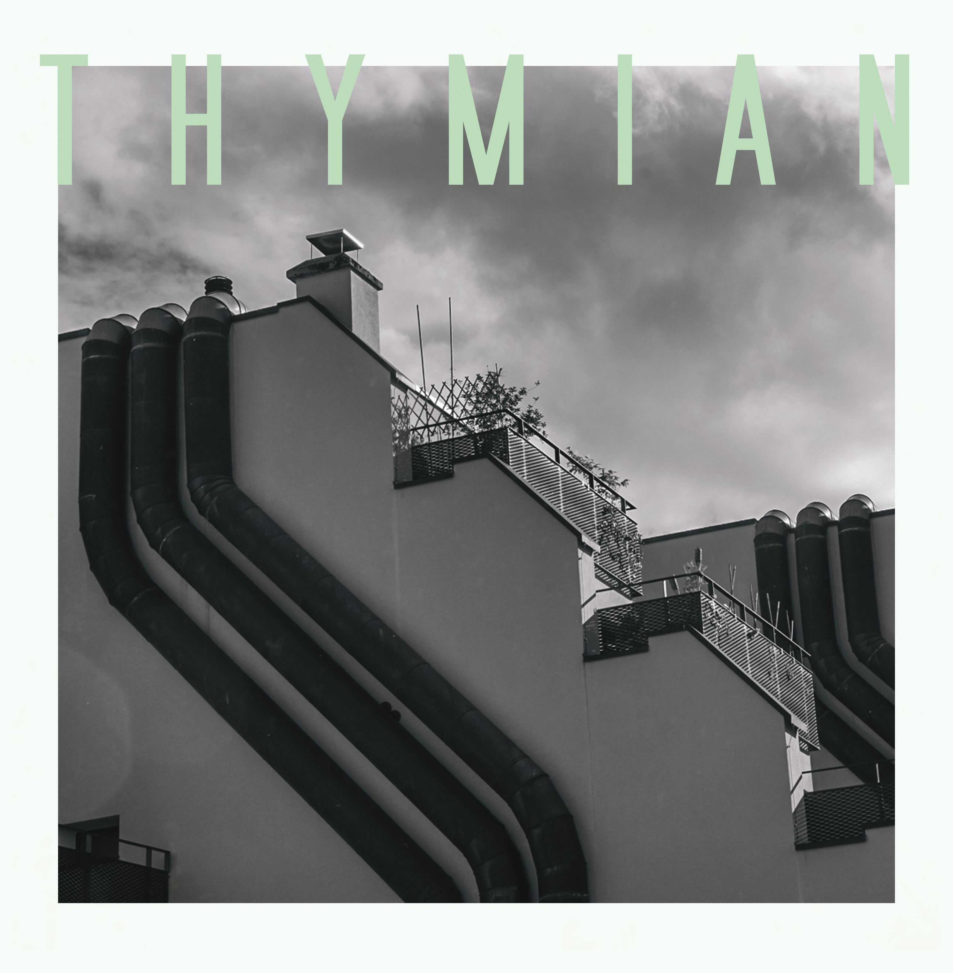thymian cover